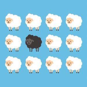 Schwarze Schafe in Seniorenheimen im Osteuropa