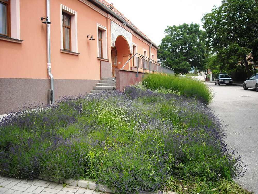 Betreutes Wohnen in Ungarn